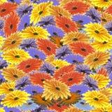 Nahtloses Blumenmuster rot, orange, gelbe, violette, purpurrote, blaue Blumen Playnig mit Leuchte Stockbilder