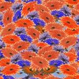 Nahtloses Blumenmuster rot, violette, blaue Blumen Playnig mit Leuchte Stockfotografie