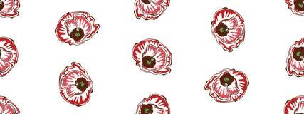 Nahtloses Blumenmuster Schöne und große Mohnblumenblumen auf einem Weiß Abstrakte Handgezogener Vektorhintergrund stockbild