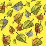 Nahtloses Gekritzelmuster mit Blättern Lizenzfreie Stockfotografie