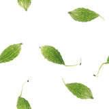 Nahtloses Gemüsemuster lizenzfreies stockbild