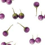 Nahtloses Gemüsemuster Stockfotos