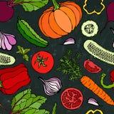 Nahtloses Gemüsemuster mit Gurken, rote Tomaten, grüner Pfeffer, rote Rübe, Karotte, Zwiebel, Knoblauch, Paprika, Pumpkine FoodHa Lizenzfreie Stockbilder