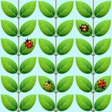 Nahtloses geometrisches Laubmuster mit Marienkäfern stockfotos