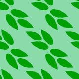 Nahtloses Grün lässt Muster Lizenzfreie Stockfotos