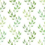 Nahtloses grünes Frühlingsmuster mit olivgrünen Blättern Lizenzfreie Stockbilder