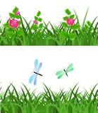 Nahtloses grünes Gras mit Blumenblumen und -libellen Stockbild