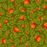 Nahtloses grünes Muster der Rosen-Hüfte. Lizenzfreie Stockbilder