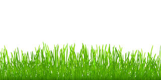 Nahtloses Gras Stockbild