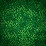 Nahtloses Gras-Muster Stockfoto