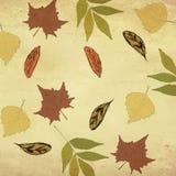 Nahtloses Herbstdesign stock abbildung