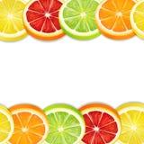Nahtloses horizontales Muster der Zitrusfruchtscheiben Zitronenkalkpampelmuse und orange Mischung lizenzfreie abbildung
