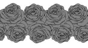 Nahtloses horizontales Rahmenelement von grauen Rosen wi Stockbild