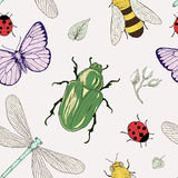 Nahtloses Insektenmuster lizenzfreie abbildung