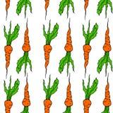 Nahtloses Karottengemüsemuster des Hintergrundes vith Lizenzfreie Stockfotos