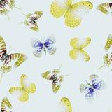 Nahtloses Lithium 01 des Schmetterlinges Stockbilder