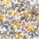 Nahtloses Lithium 07 des Schmetterlinges lizenzfreie abbildung