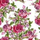 Nahtloses mit Blumenmuster Lizenzfreies Stockbild
