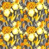 Nahtloses mit Blumenmuster Blumenhintergrund der gelben Iris Lizenzfreies Stockfoto