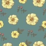 Nahtloses mit Blumenmuster des Vektors mit gelben Rosen Lizenzfreie Stockbilder