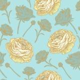 Nahtloses mit Blumenmuster des Vektors mit persischer Butterblume Stockbilder