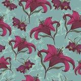 Nahtloses mit Blumenmuster des Vektors mit purpurroten Lilien Lizenzfreies Stockbild