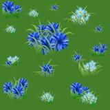 Nahtloses mit Blumenmuster mit blauen Kornblumen und Gras Stockfotografie