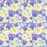 Nahtloses mit Blumenmuster mit Gänseblümchen und Schmetterlingen Stockfoto