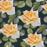 Nahtloses mit Blumenmuster mit gelben Rosen des Aquarells Lizenzfreie Stockfotos