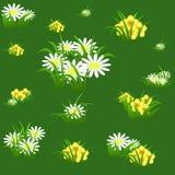 Nahtloses mit Blumenmuster mit Kamille und Grün verlässt auf ligh Stockbilder