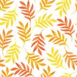 Nahtloses mit Blumenmuster mit Orange verlässt auf weißem Hintergrund Stockfoto