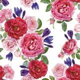 Nahtloses mit Blumenmuster mit Rosen und Krokussen Lizenzfreies Stockfoto