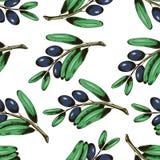 Nahtloses Muster Beutifull mit Oliven Stockfoto