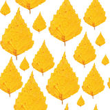 Nahtloses Muster - Blätter der gelben Birke Stockfotografie