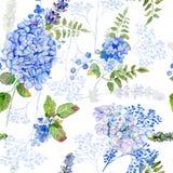 Nahtloses Muster Blaue Hortensie des Aquarells, Lavendel, Korinthe Stockbild