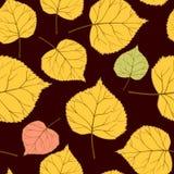 Nahtloses Muster Browns mit leaves-01 Stockbilder