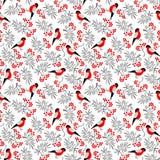 Nahtloses Muster Bullfinch-Vögel lizenzfreie abbildung