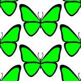 Nahtloses Muster Bunt utterfly auf weißem Hintergrund stock abbildung