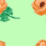 Nahtloses Muster der Anemonenaquarell-Blume Stockfotos