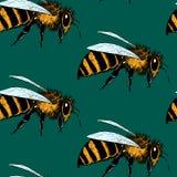 Nahtloses Muster der Bienen Lizenzfreie Stockfotos