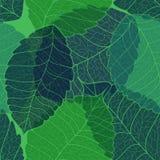 Nahtloses Muster der Blätter lizenzfreie abbildung