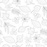 Nahtloses Muster der Blätter Stockfotografie