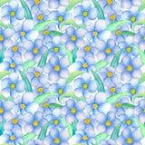 Nahtloses Muster der blauen Blume Blumenillustration des handgemalten Aquarells vektor abbildung
