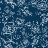 Nahtloses Muster der Blume Lizenzfreie Stockbilder