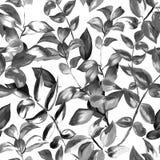 Nahtloses Muster der dekorativen Blätter für Oberflächenentwurf, Gewebe, Packpapier, Hintergrund Zusammenfassungsart schwarz und lizenzfreie abbildung