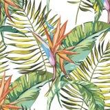 Nahtloses Muster der Eleganz in der Weinleseart mit Strelitzia blüht ENV 10 Lizenzfreie Stockbilder