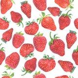 Nahtloses Muster der Erdbeere Stockfotografie