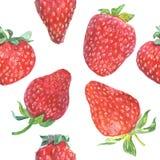Nahtloses Muster der Erdbeere Stockbild