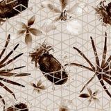 Nahtloses Muster der exotischen Geometrie Lizenzfreie Stockfotos