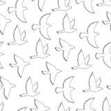 Nahtloses Muster der Fliegenvögel Lizenzfreies Stockbild